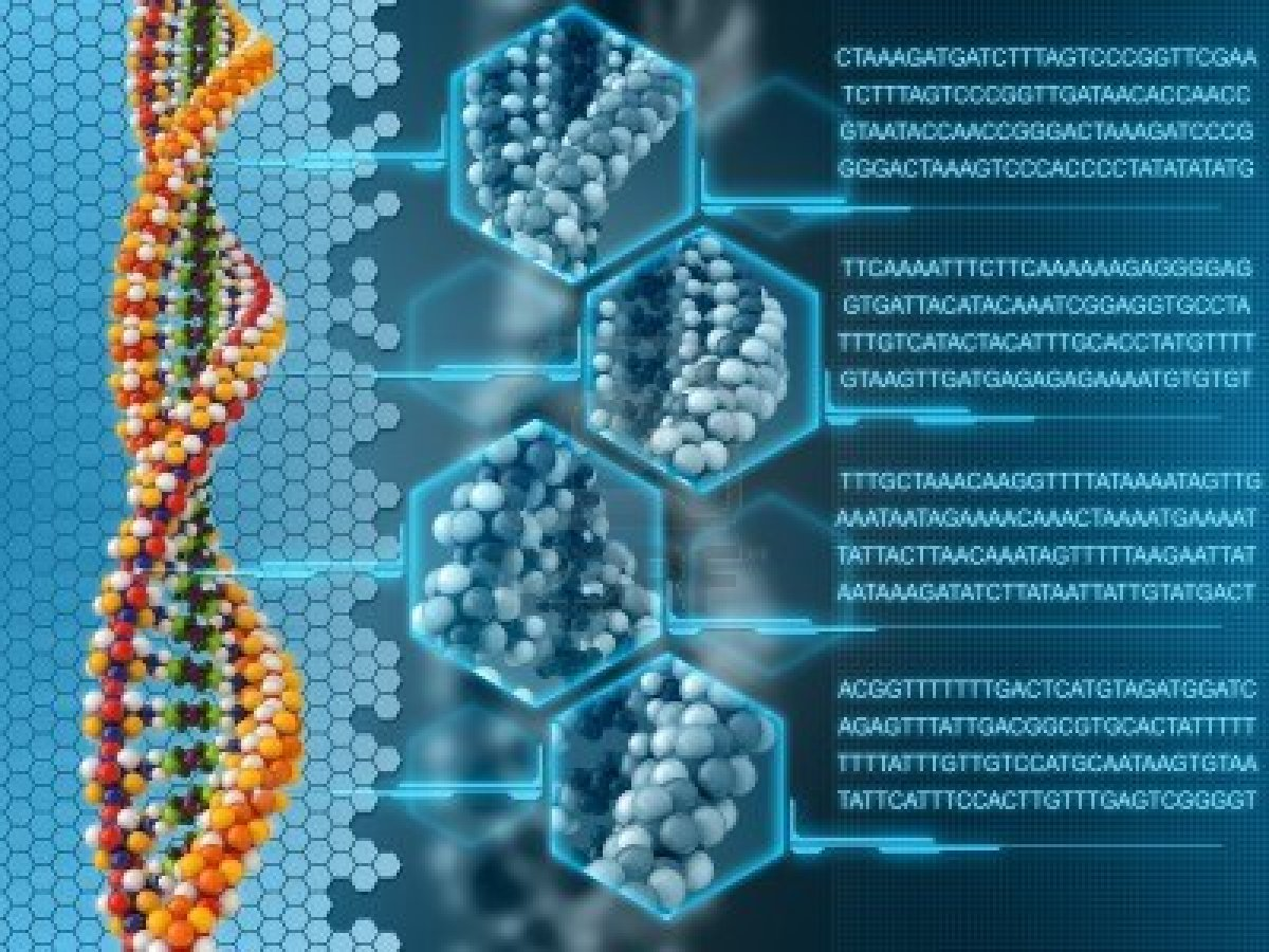 Info via DNA
