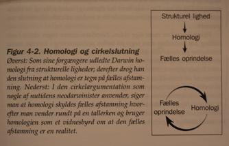 homologi