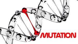 gen-mutasjon