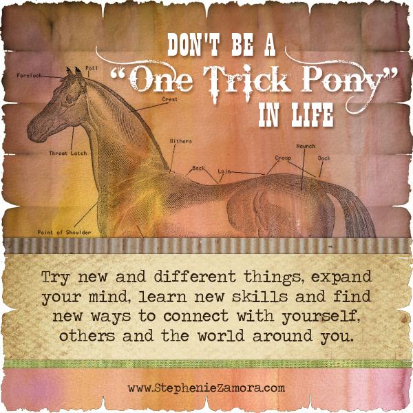 one-trick-pony